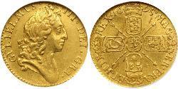 1/2 Guinea Kingdom of England (927-1649,1660-1707) Gold William III (1650-1702)