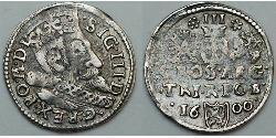 Grosh  Silber Sigismund III